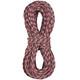 Edelrid Cobra Rope 10,3mm 70m Red/Snow